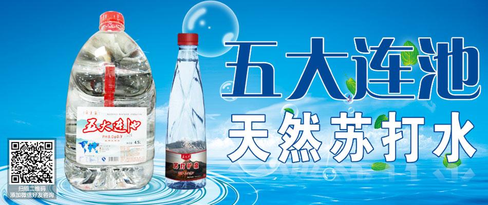 五大连池苏打矿泉饮品有限责任公司