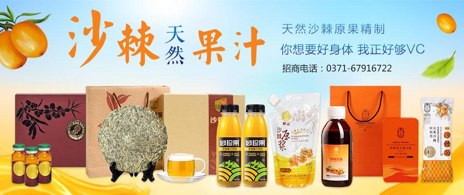 河南康元沙棘生物科技有限公司