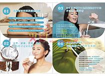 台椰营销推广手册十三