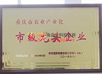 重庆农业产业化市级龙头
