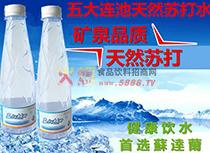 五大连池苏打矿泉水产品展示