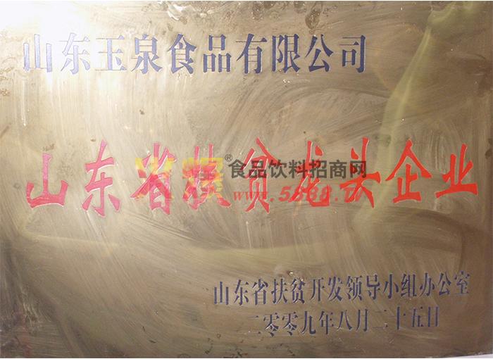 中国扶贫龙头企业