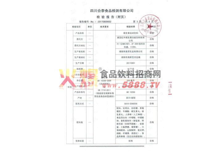 公司检验报告附页