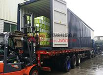 丰盛食品运货车装货中
