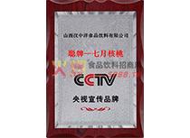 CCTV宣传品牌