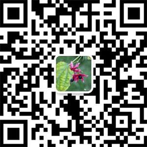 内蒙古希蒙乳业有限公司