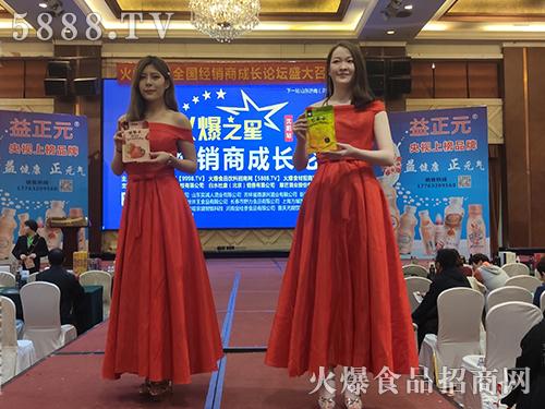 火爆之星全国经销商成长论坛沈阳站模特走秀