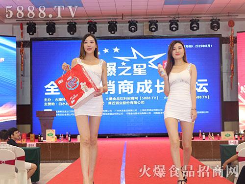 火爆之星全国经销商成长论坛合肥站模特展示产品