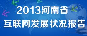 2013河南省互联网发展状况报告