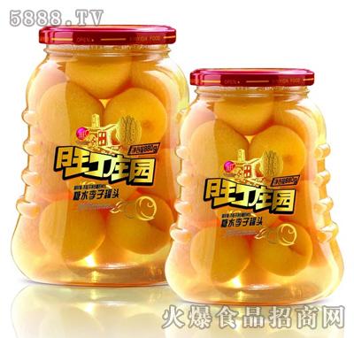 鑫亿达-旺丁庄园糖水李子罐头