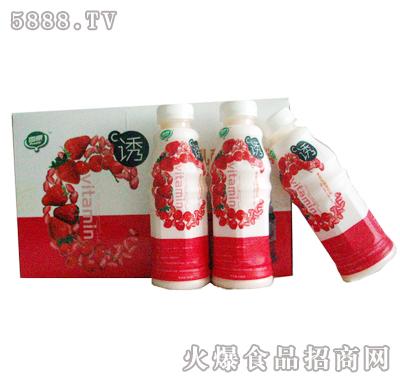 C�T乳酸�料草莓味