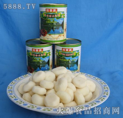 桂香源567g马蹄罐头整