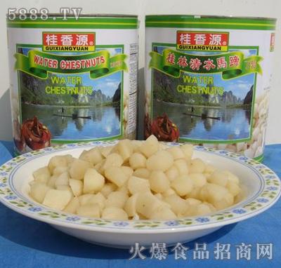 桂香源马蹄罐头丁