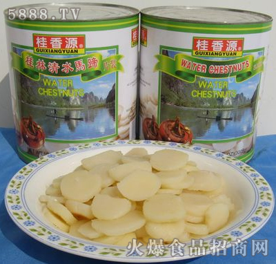 桂香源马蹄罐头片