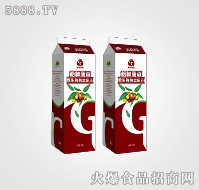 屋顶包1l装酸枣汁|济南康森生物科技有限公司-火爆网.