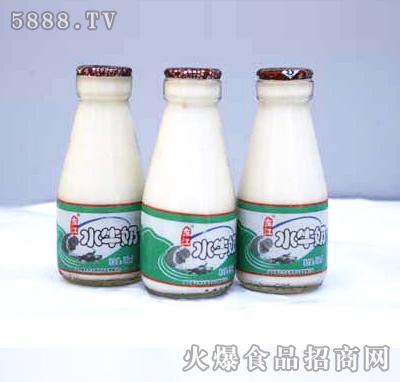 左江水牛酸奶
