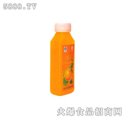 芦荟橙汁(300ml、500ml、1000ml)