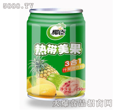 椰臣热带美果3合1什果汁饮料250ml