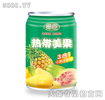 椰臣热带美果饮料250ml