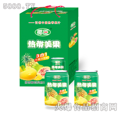 椰臣热带美果饮料礼盒