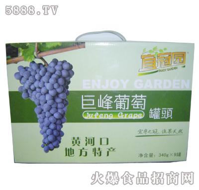 巨峰葡萄罐头礼盒装