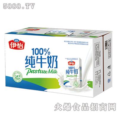 伊怡纯牛奶250mlx16盒