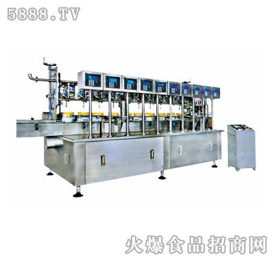 双特ST-CZ10大容量称重灌装机