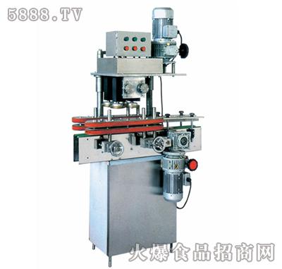 双特ST-FXZ-B型自动直列式紧盖机