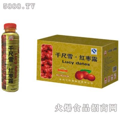 千尺雪红枣露果味饮料480mlx15瓶