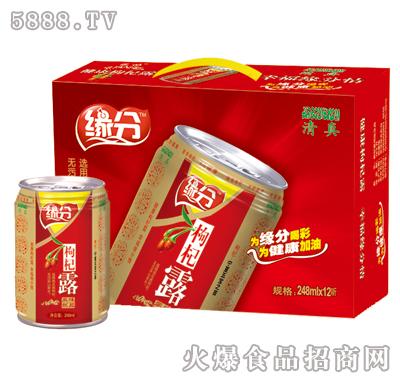 缘分枸杞露248ml×12听礼盒
