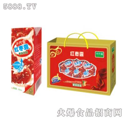 千尺雪红枣露果味饮料250ml×10盒