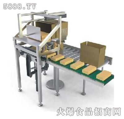 松川-p33机械手辅助下沉式填箱平台现面向全国招商图片