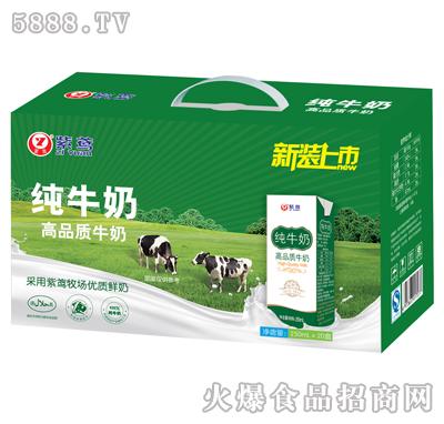 紫鸢纯牛奶250mlx20盒