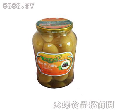 家佳果园糖水李子罐头