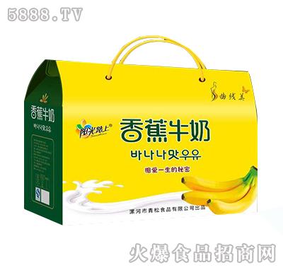 阳光路上香蕉牛奶礼盒