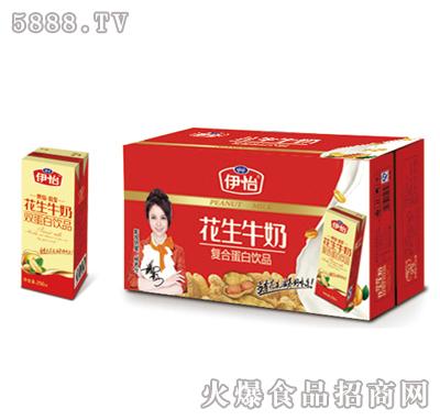 伊怡花生牛奶双蛋白饮品250mlx16盒