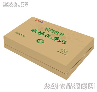 紫鸢纯牛奶礼盒250mlx10盒