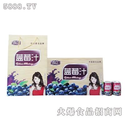 1x20罐领舞蓝莓汁礼盒