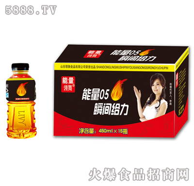 450ml×15瓶领舞能量05