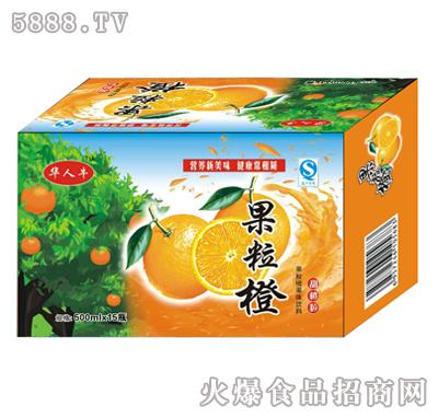 500mlx15瓶华人牛果粒橙
