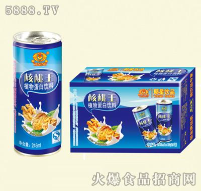 椰星核桃王245ml×20罐|百森食品饮料有限公司-火爆网