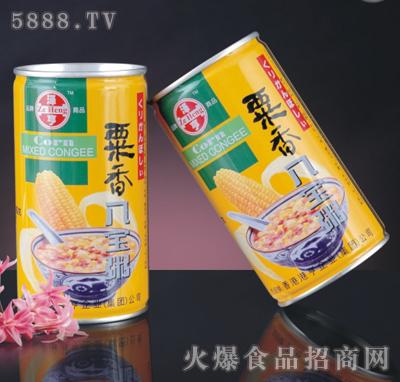 泽亨粟香八宝粥产品图