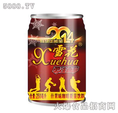 雪花功能能量饮料250ml