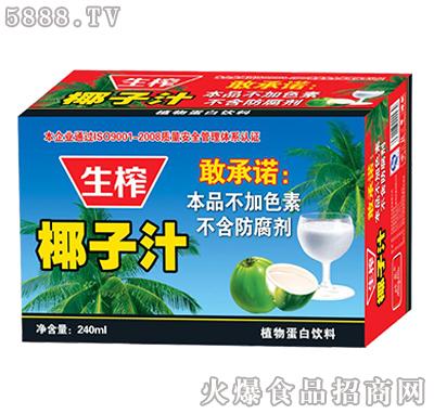欣泉椰子汁植物蛋白饮料240ml