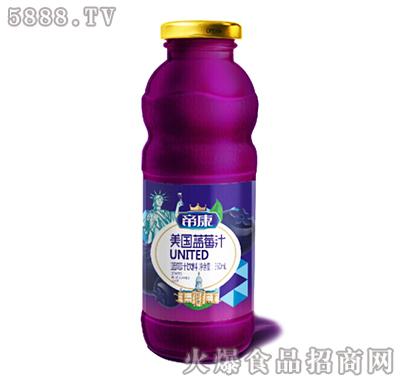 帝康美国蓝莓汁350ml