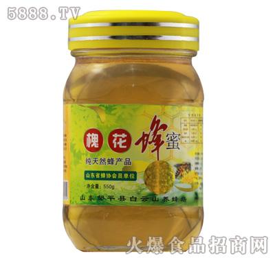 鹤伴山槐花蜂蜜550g