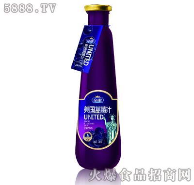 帝康美国蓝莓汁728ml