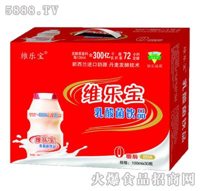 �S���乳酸菌�品100mlx30