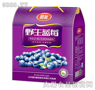 团友野生蓝莓礼盒装