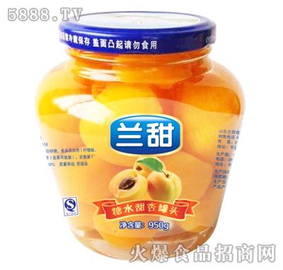 兰甜糖水甜杏罐头950g